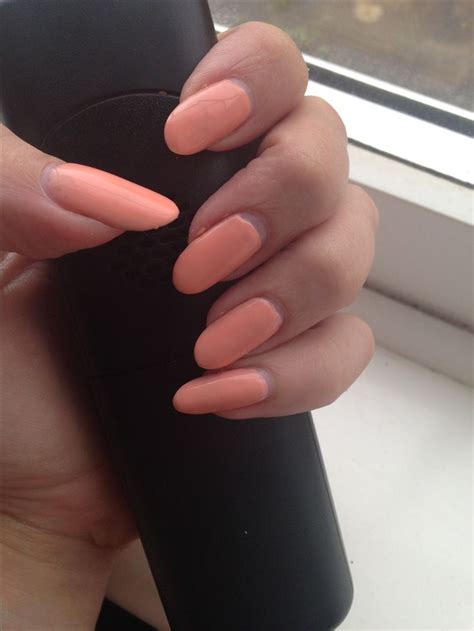 best gel nail varnish 25 best ideas about gel nail varnish on