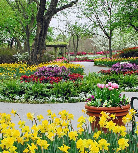 Dallas Flower Garden Landscaping Ideas From The Dallas Arboretum