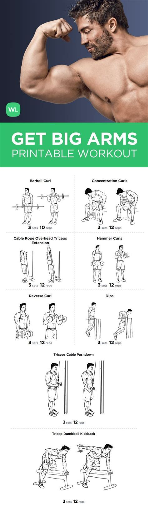 best 25 big arm workout ideas on