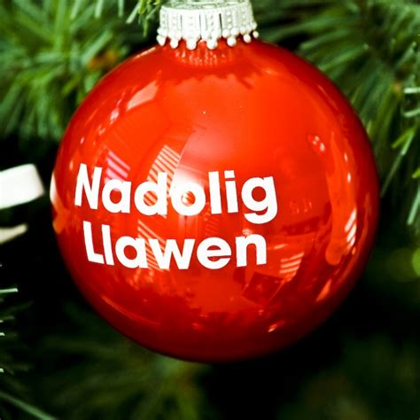 nadolig llawen in lights 17 best images about nadolig llawen on trees and