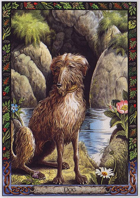 the druid animal oracle lrs the druid animal oracle painted by bill worthington dog image only