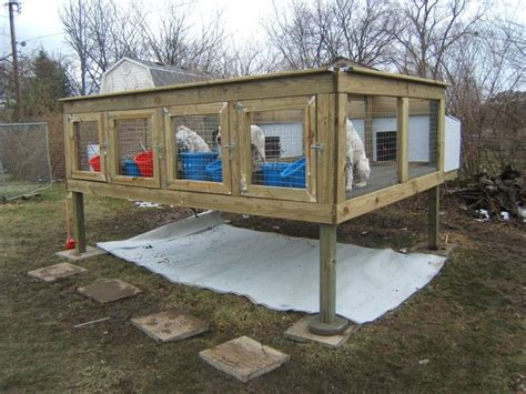hunting dog houses dog run ideas ground bing images