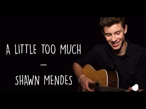 too much mp a little too much shawn mendes lyrics
