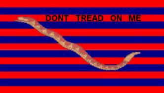 Navy Stripe Curtain South Carolina Colonial Revolutionary War Flags U S