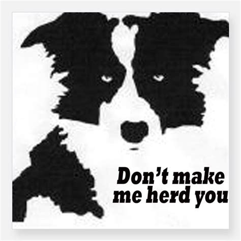 Border Collie Stickers For Cars border collie bumper stickers car stickers decals