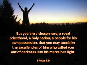 Into Marvelous Light 1 Peter 2 9 But You Are A Chosen Race A Royal Priesthood