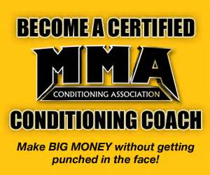 mixed martial arts conditioning association become an mixed martial arts conditioning association zoominfo com