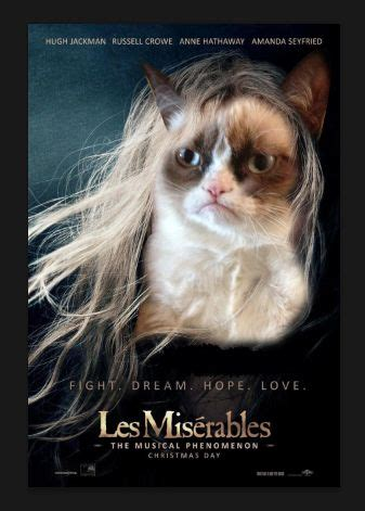 Miserable Cat Meme - pinterest the world s catalog of ideas