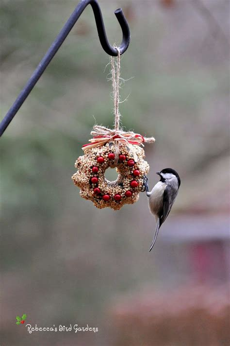 1000 ideas about bird seed ornaments on pinterest