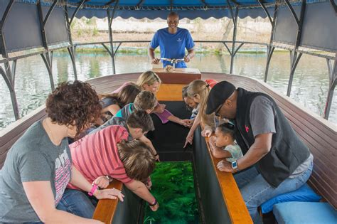 glass bottom boat tours san marcos san marcos newly renovated glass bottom boat takes its