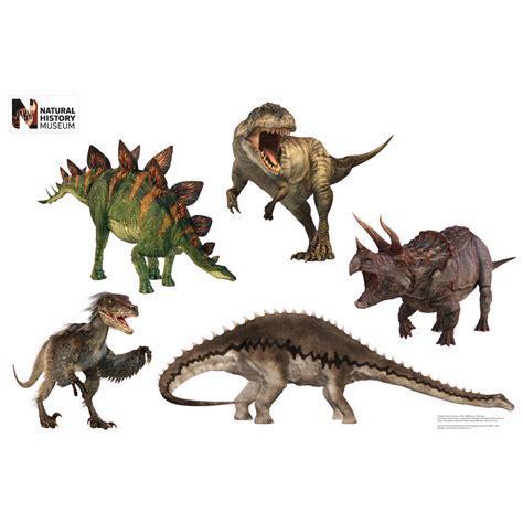 Dinosaur Decor by Dinosaur Layout Wall Decor