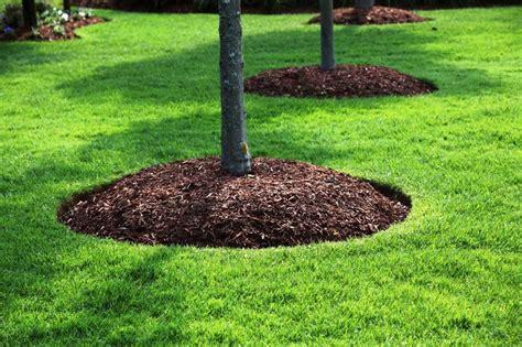 landscape companies landscaping with mulch bjorklund companies