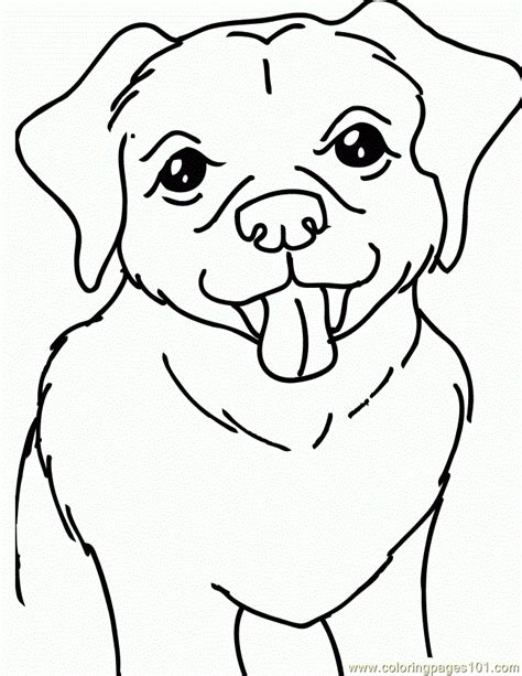 coloring pages of lab puppies yellow lab dog 650x841 coloring page free dog coloring