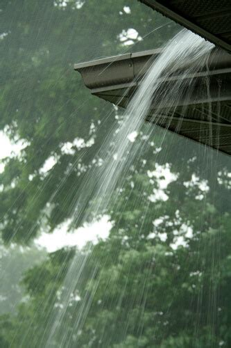 looking for something to clean gutters leaf guard gutters home makeover the home