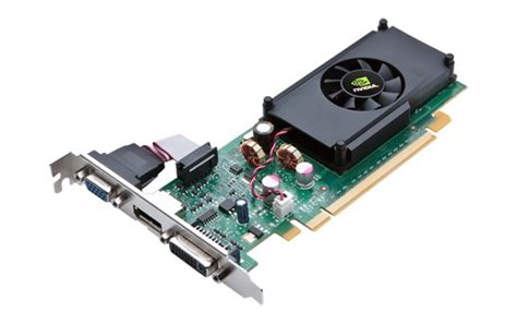 Nvidia Gift Card - nvidia officially details geforce g210 and gt 220 graphics cards