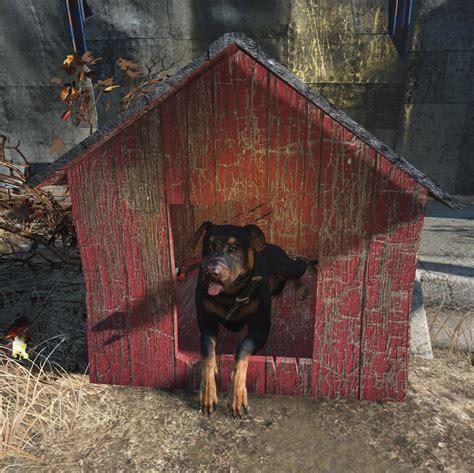 junkyard dogs junkyard fallout wiki fandom powered by wikieden