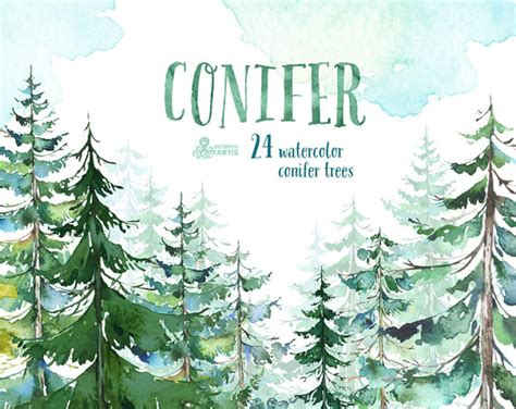 winter woods watercolor clip pine trees snow log cabin watercolor background conifer trees watercolor pine spruce forest wood