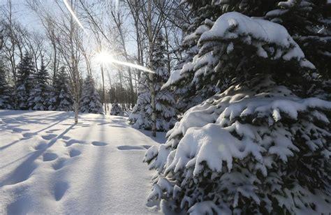 imagenes de invierno en rusia univision orlando 187 ascienden a 272 los muertos por el