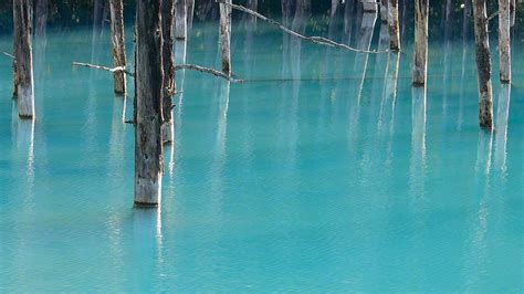 apple wallpaper blue pond the blue pond in hokkaido changes colors depending on the