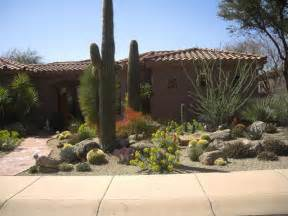 gardening landscaping inspiring desert landscaping