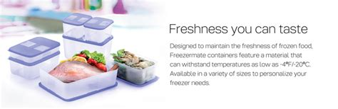 Freezermate 1 5l Tupperware tupperware numit freezermate ii 1 5l 1 pc small ii 650ml
