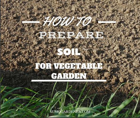 how to prepare soil for vegetable garden sumo gardener
