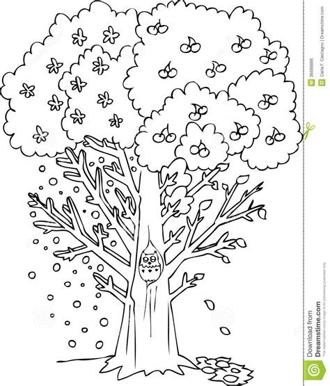 coloring pages trees four seasons coloring season tree vector stock vector image 36688886