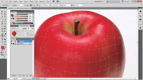 tutorial illustrator mesh tool illustrator mesh tool youtube