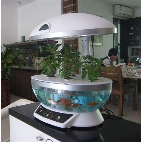 hydroponic gardening aquaponics indoor garden