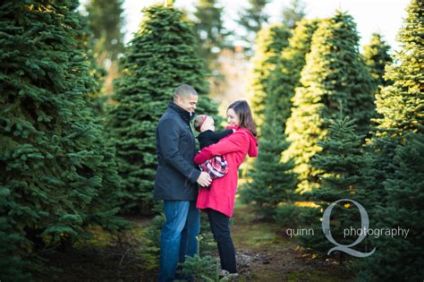 pictures on christmas tree farms in salem oregon easy