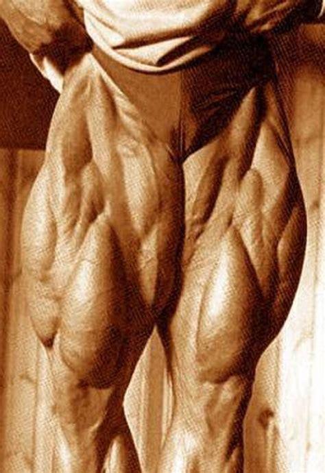 tom platz bench press tom platz quads generation iron fitness bodybuilding network