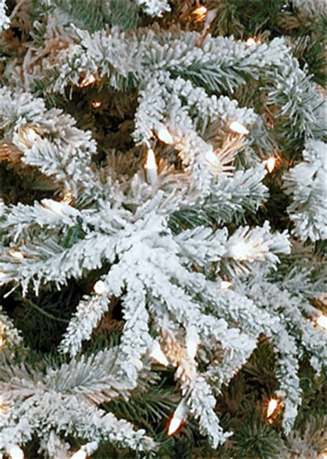 christmas tree world frosted and flocked christmas tree