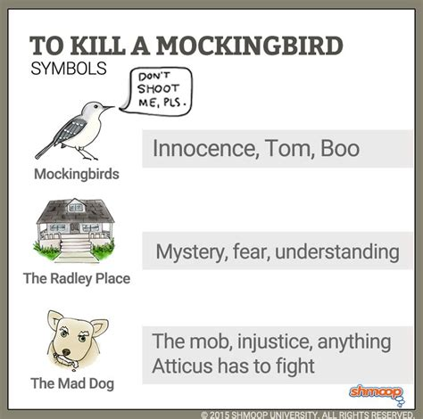 themes of injustice in to kill a mockingbird 521 best to kill a mockingbird images on pinterest