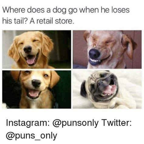 puppy puns for instagram 25 best memes about retail store retail store memes