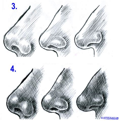 Drawing Noses by How To Draw Realistic Noses Draw Noses Step By Step