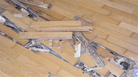 Lackieren In Der Wohnung was mieter in der wohnung renovieren streichen und