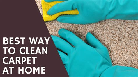 best way to clean rugs by best way to clean carpet at home best carpet cleaners review