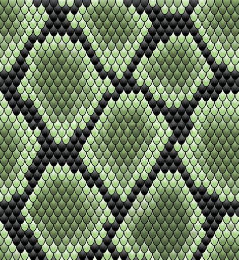 vector set of snake skin pattern elements 01 over green seamless snake skin pattern stock vector colourbox