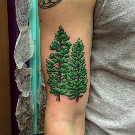 pine tree tattoos designs ideas and meaning tattoos for you