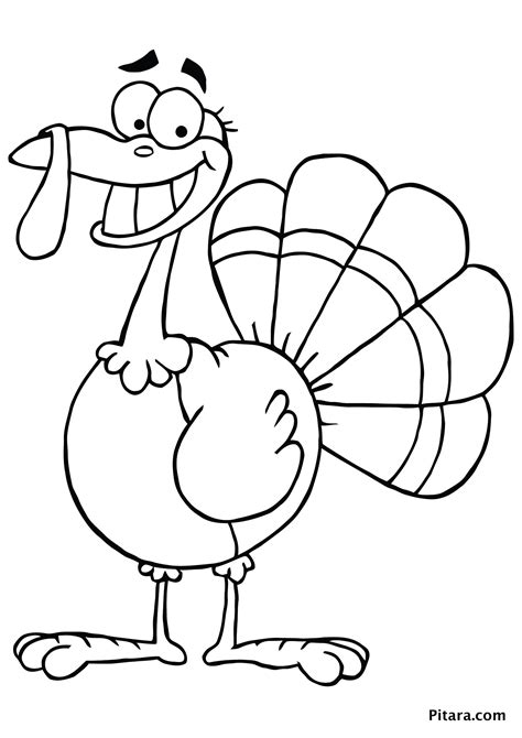 turkey color page turkey coloring pages for pitara network