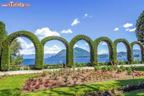 giardini di villa taranto curatissime aiuole all interno dei giardini foto