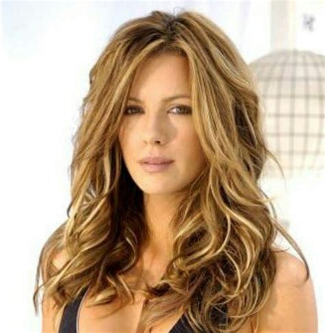hair color brown highlights hair styles color