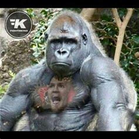 conor mcgregor gorilla tattoo conor mcgregor deleted fb post sherdog forums ufc mma