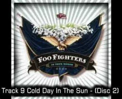 Foo Fighter In Your Honor foo fighters cold day in the sun