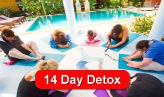 Affordable Detox Thailand by Rapid Detox Weight Loss Juice Fasting Packages Samui