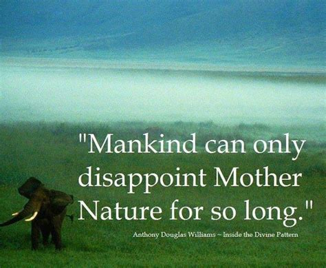 not so different finding human nature in animals books mankind and nature animal quotes and animals