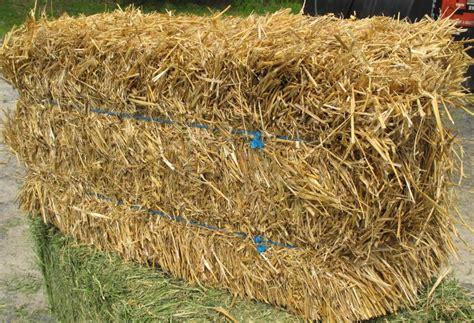 5006 mulch straw in 2 string bales aden brook quality hay straw