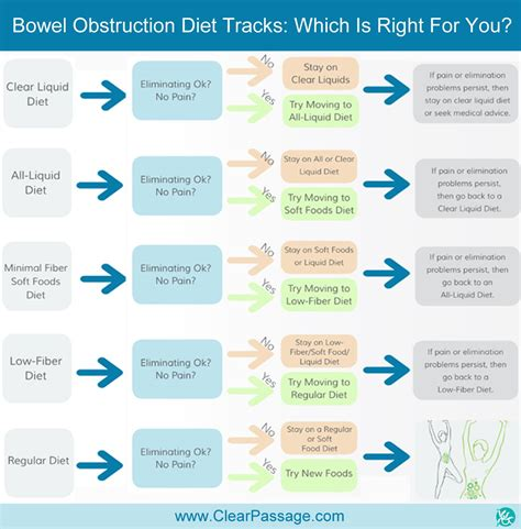 Detox Sbo by Bowel Obstruction Is A Condition In Which Adhesions Or