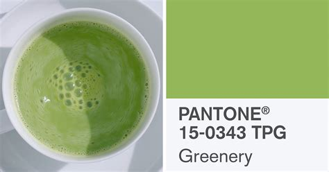 pantone color of the year 2017 2017 color of the year is greenery according to pantone