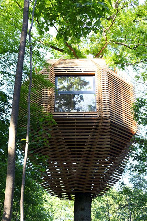 tiny tree house this gorgeous modern treehouse hides a surprising interior